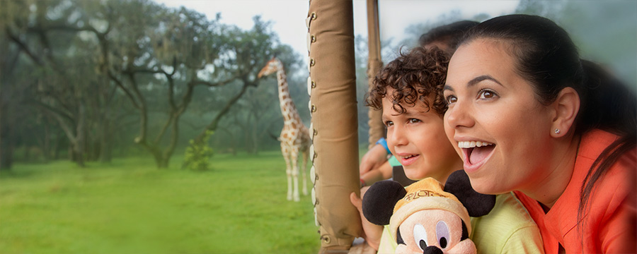 On safari at Disney's Animal Kingdom Park