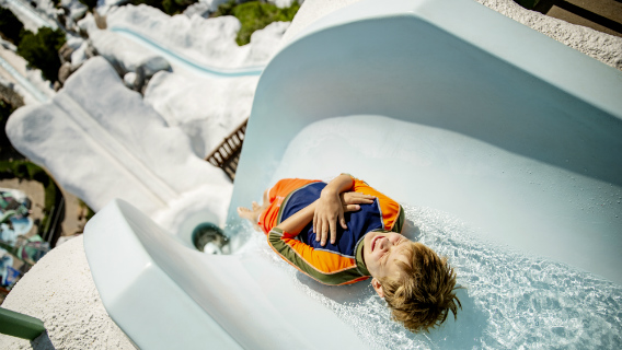 Dive into Fun at Disney's Blizzard Beach